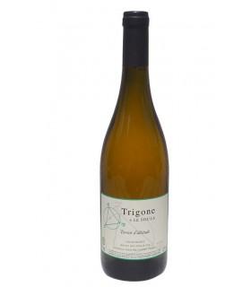 Trigone Blanc N°19 - Domaine Le Soula
