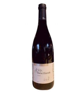 Brocéliande Syrah 2018 - Domaine F. Merlin