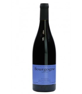 Bourgogne Pinot Noir 2019 - Domaine Sylvain Pataille